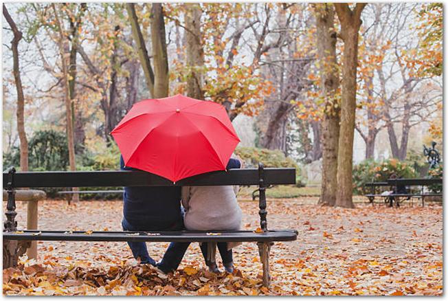 公園のベンチで傘の下のカップル